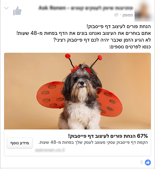מודעה לדוגמה - הנחת פורים לעיצוב דף פייסבוק! אתם בוחרים את העיצוב ואנחנו בונים את הדף בפחות מ-48 שעות! לא הגיע הזמן שכבר יהיה לכם דף פייסבוק רציני? כנסו לפרטים נוספים: